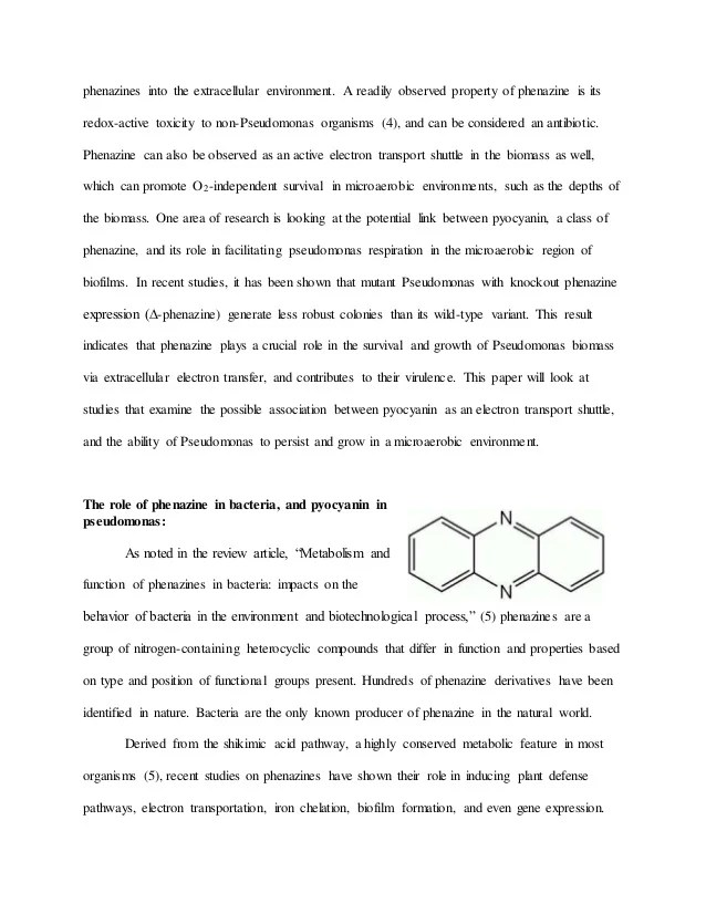 Instructions For Second Essay English 272D Research Paper In