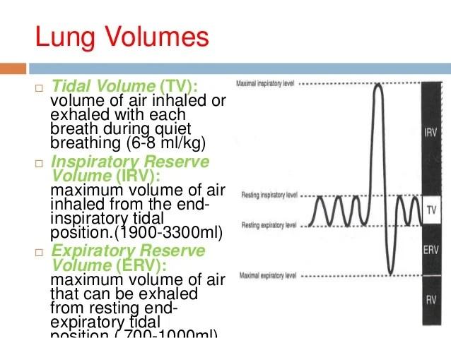 Bedside respiratory assessment & spirometry