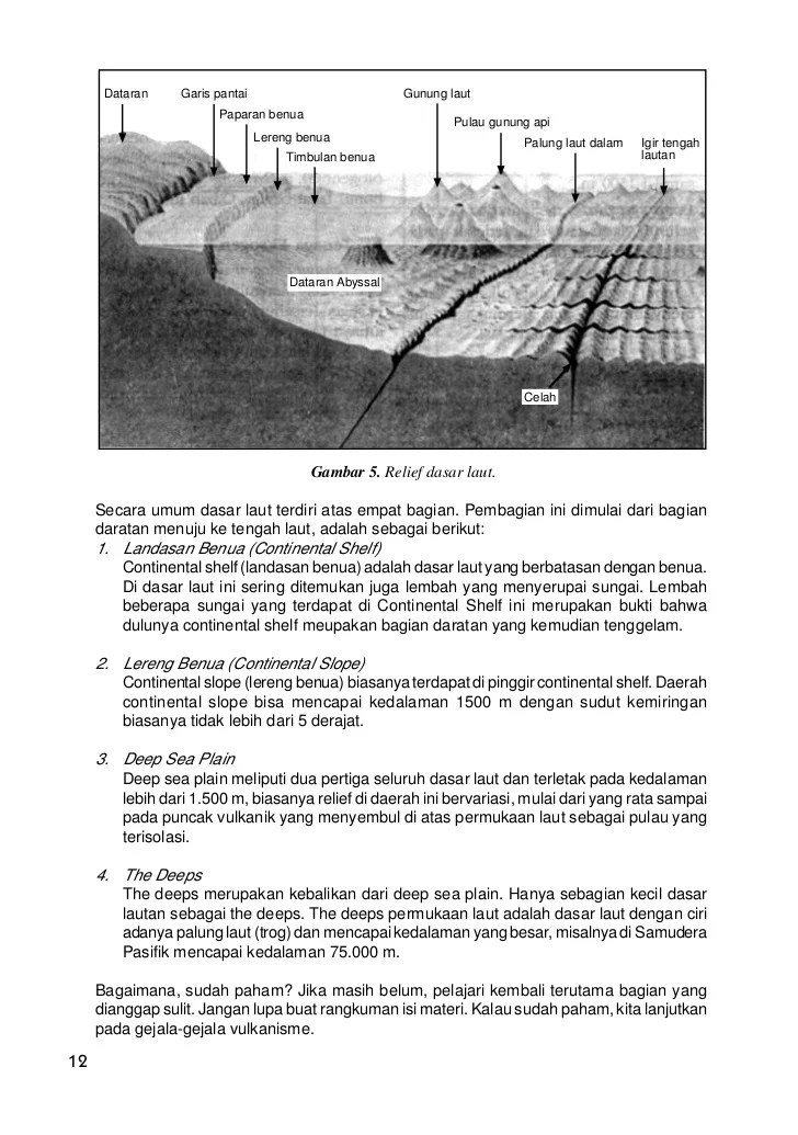 Pengertian Relief Dasar Laut, Bentuk, dan Contoh
