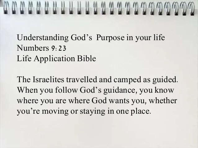 bible verses on purpose