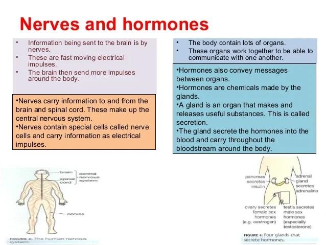 Biology1 revision
