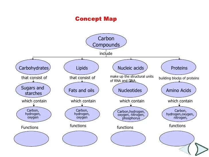 Macromolecules Concept Map Answers.Macromolecule Concept Map Answers
