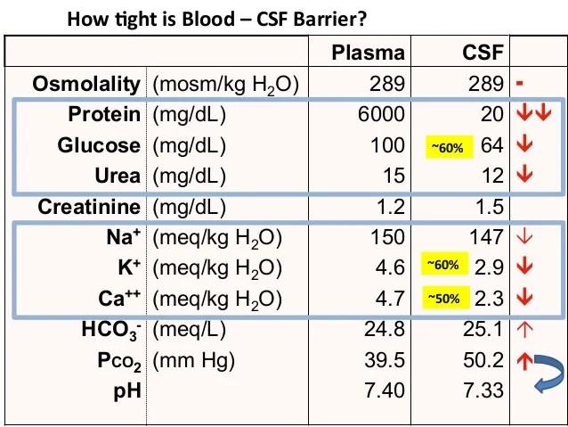 Cells Plexus Choroid Csf