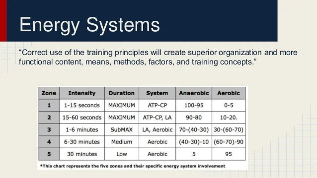 Energy systems   also body used in swimming rh slideshare