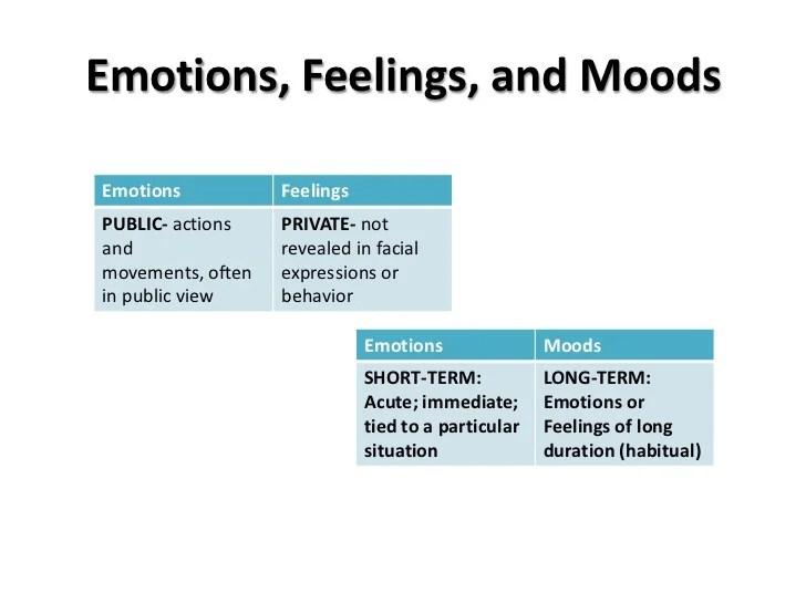 Bradford Mvsu Fall 2012 Sociology Of Emotions
