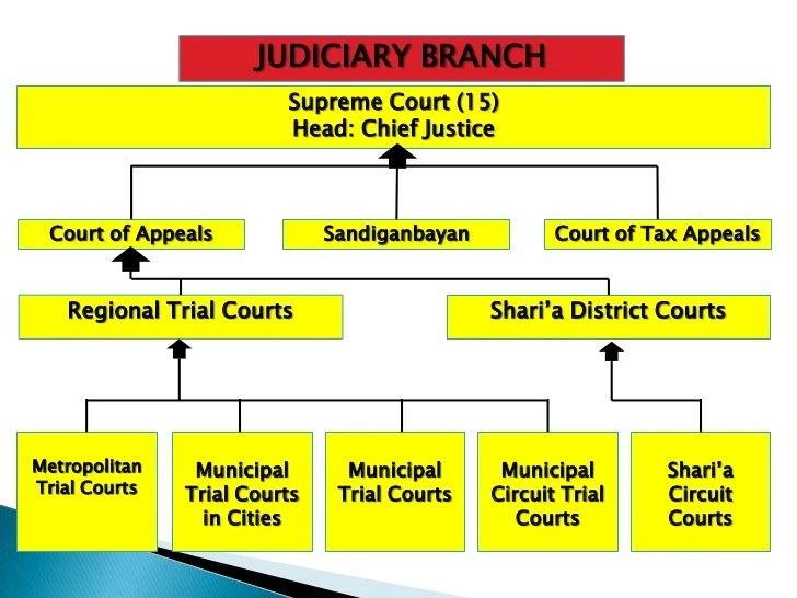 judicial branch court system diagram of a delta landform branches government judiciary