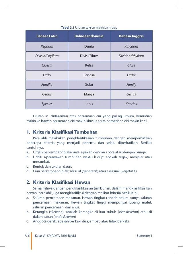 Tabel 2.6 Perbedaan Tumbuhan Lumut Paku Dan Mangga : tabel, perbedaan, tumbuhan, lumut, mangga, Tabel, Hasil, Pengamatan, Struktur, Tumbuhan, Berbagi