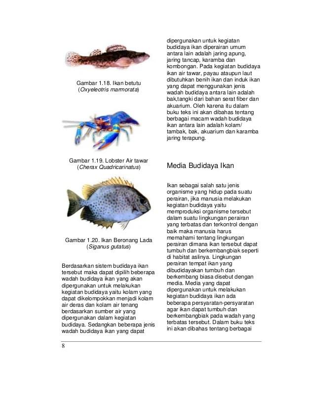 Identifikasi Wadah Budidaya Ikan Konsumsi : identifikasi, wadah, budidaya, konsumsi, Budidaya, Jilid