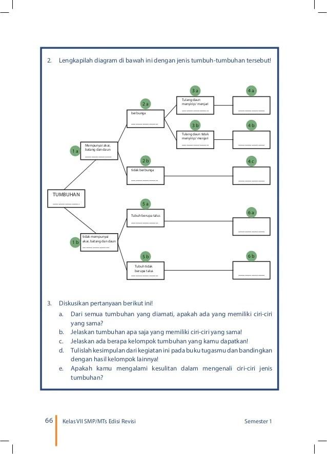 Contoh Kunci Dikotom : contoh, kunci, dikotom, Jawaban, Diagram, Kunci, Dikotom, Jenis, Tumbuh, Tumbuhan, IlmuSosial.id