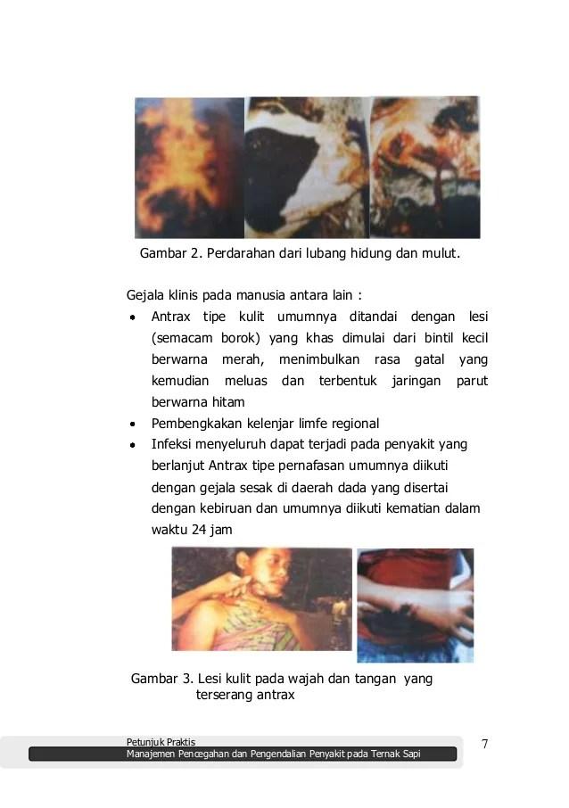Buku penyakit ternak