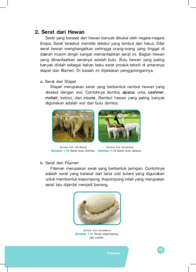 Contoh Serat Hewan Dan Manfaatnya : contoh, serat, hewan, manfaatnya, Serat, Hewan, Manfaatnya, Beserta, Gambar, Gratis, Terbaik