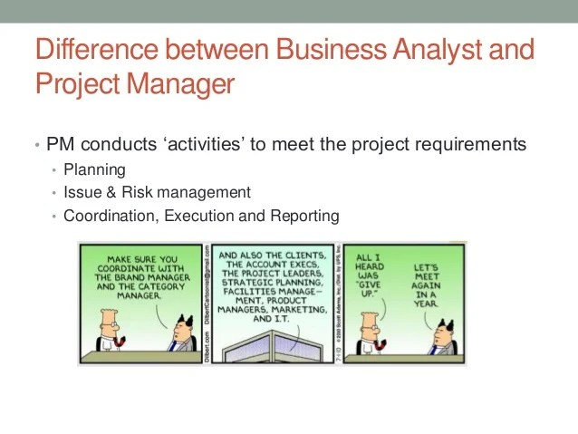 Business Analysis Project Management