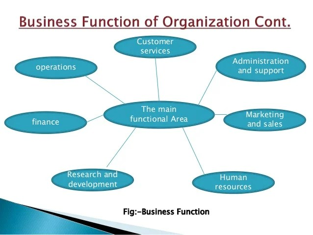 Business Function In Organization