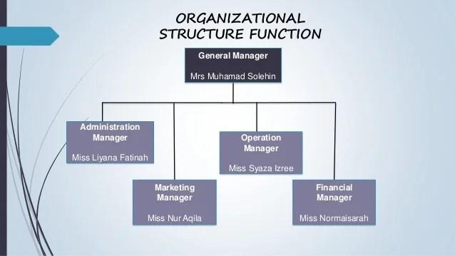 also organization chart in business plan rh blog radhemaa