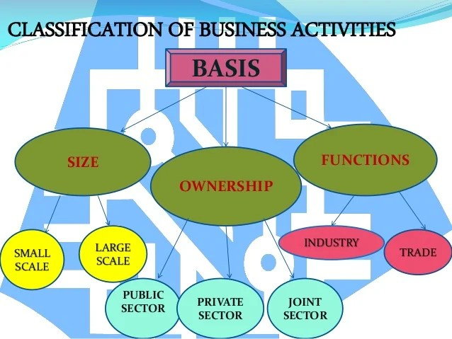 business activities or scopes of business