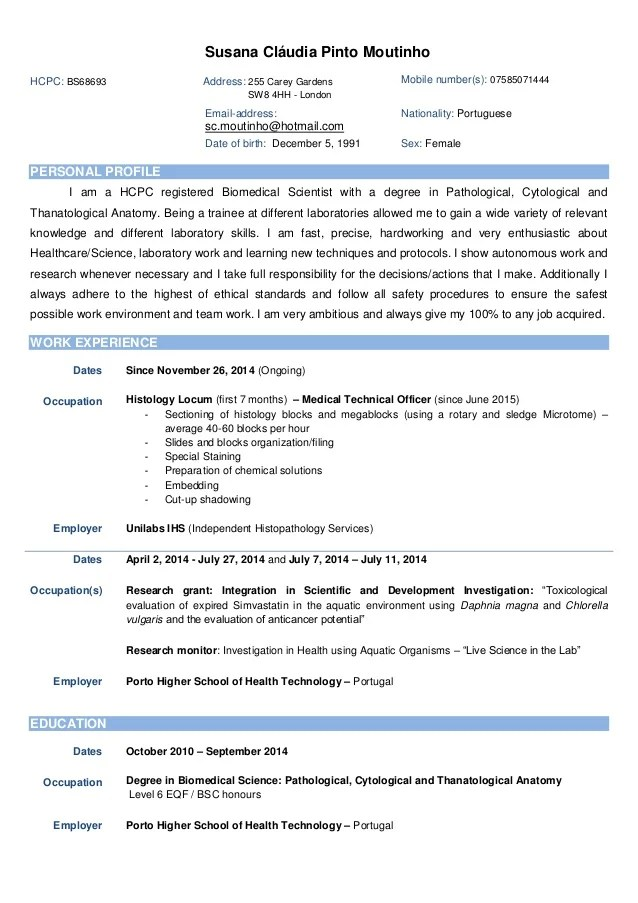 example resume for it