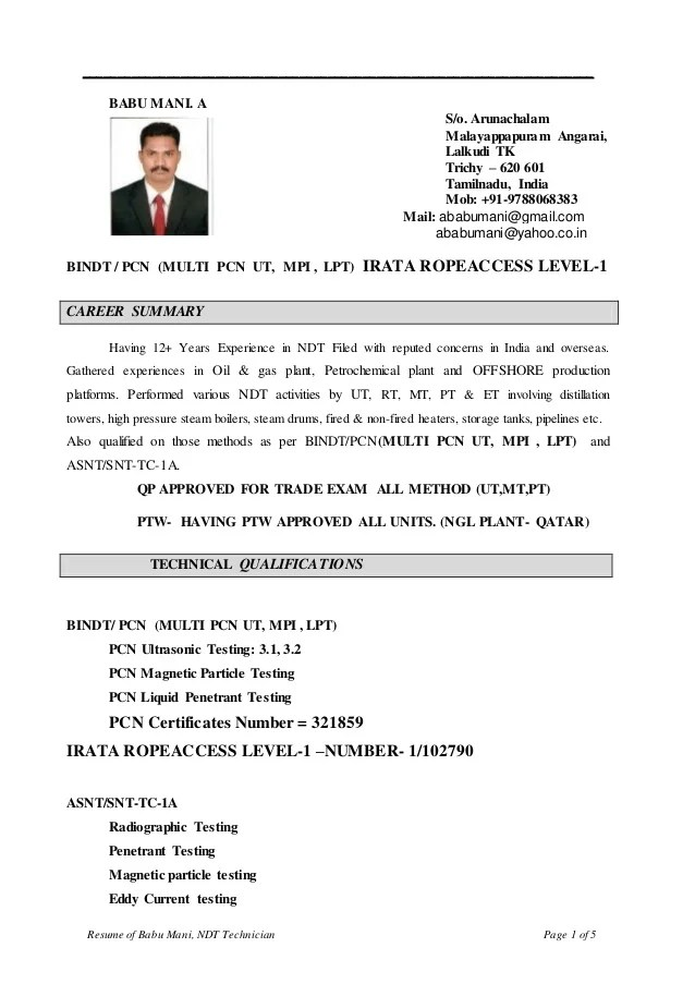 Ndt Resume Sample