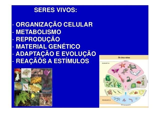 Caracteristicas gerais dos seres vivos