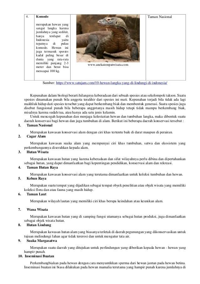 Tempat Melindungi Hewan Langka : tempat, melindungi, hewan, langka, Tempat, Pelestarian, Hewan, Tumbuhan, Langka, Sebuah