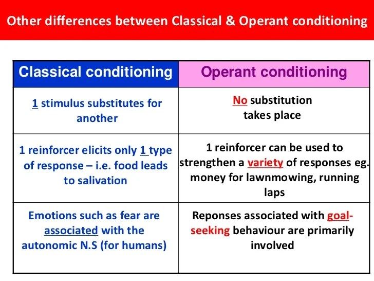 Operant Conditioning Essay Bf Skinner And Operant Conditioning