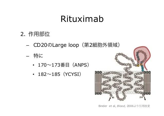 犬のリンパ腫におけるCD20