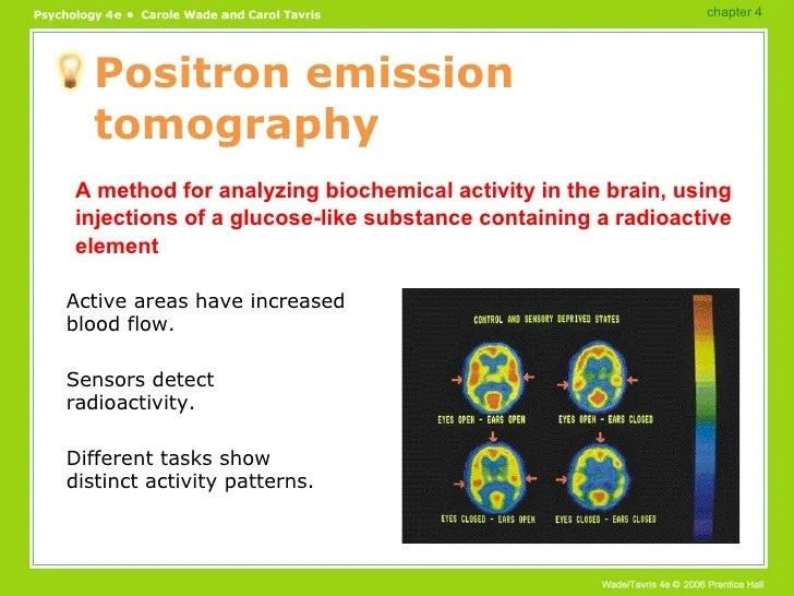 Brain Functions PowerPoint