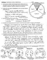 Cell Division Worksheet Answers. Worksheets. Ratchasima ...