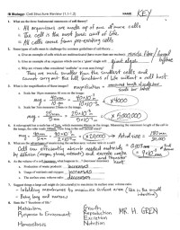 Cellular Transport Worksheet. Worksheets. Ratchasima ...