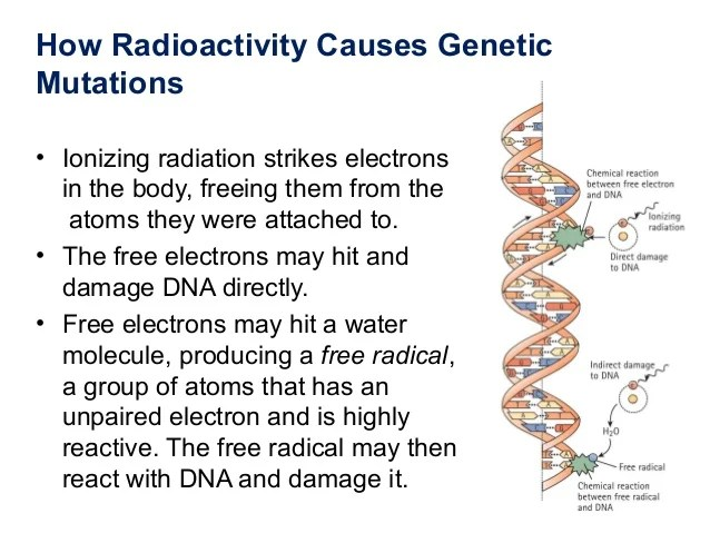 Ch16 genetics