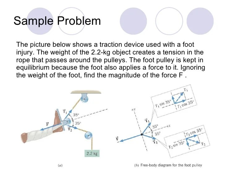 In The Diagram At The Right The Free Body Diagram Shows The Forces