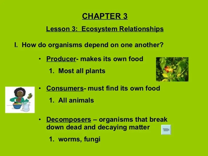 Ecosystem Relationships