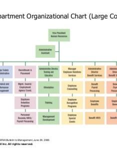 Hr org chart human resource management also frodo fullring rh
