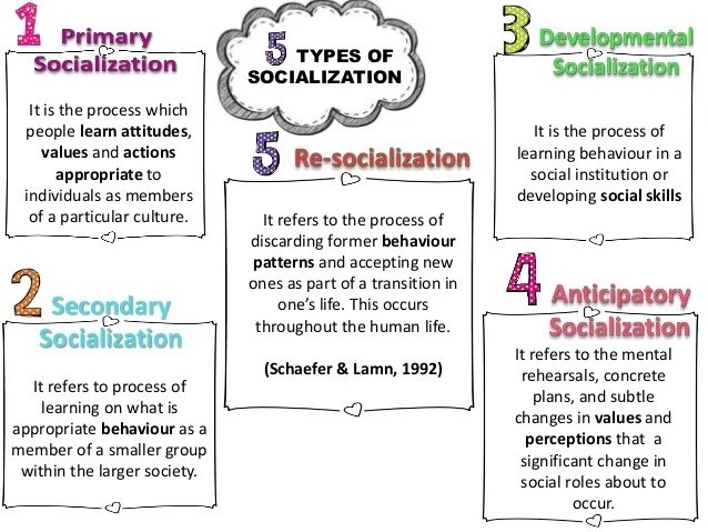 2015. CHAPTER 4 SOCIOLOGY : EDUCATION AND SOCIALIZATION