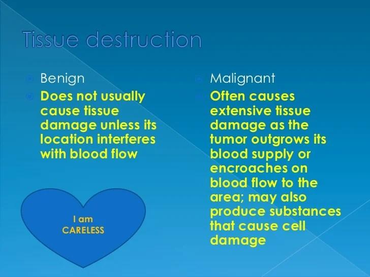 Characteristics of benign and malignant neoplasms