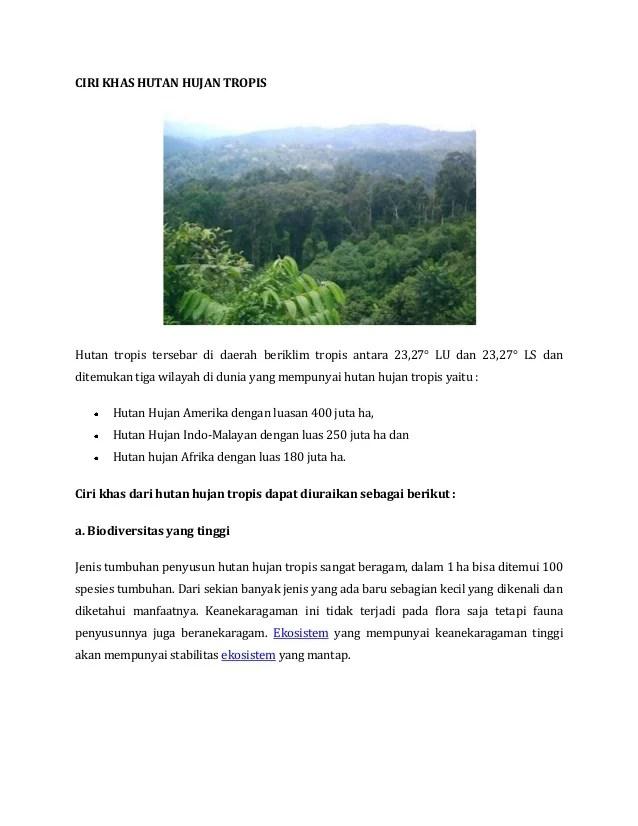 Ciri Ciri Ekosistem : ekosistem, Hutan, Hujan, Tropis