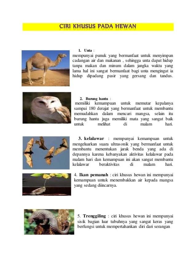 Ciri khusus hewan dan tumbuhan