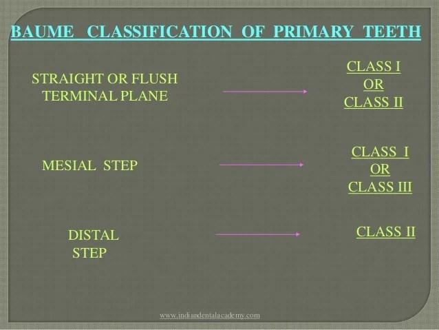 anterior teeth diagram 1998 yamaha blaster wiring classification of malocclusion