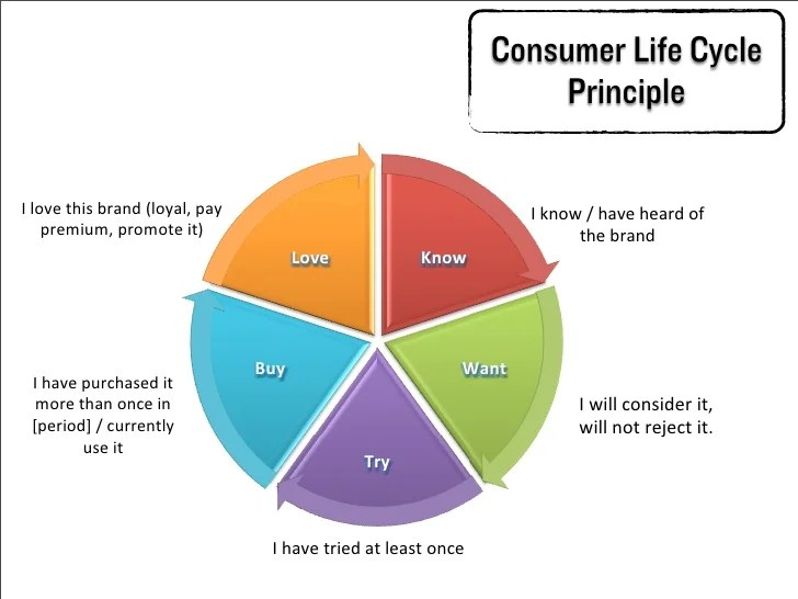 Consumer Life Cycle Research - Brand Pioneers 2012