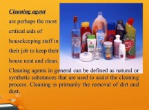 House Cleaning Supplies List | Spillo Caves