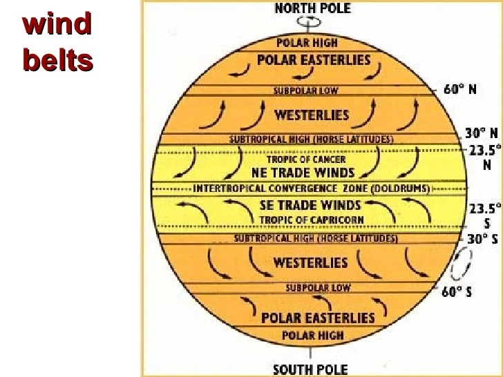 Winds Diagram Displaying 19 Images For Prevailing Winds Diagram
