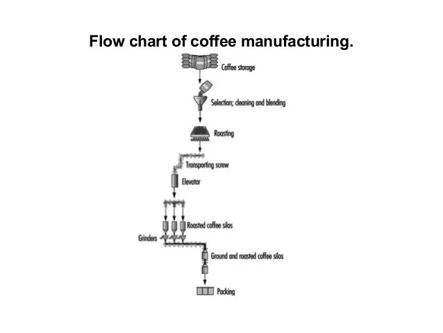 Image Result For Starbucks Coffee Kg