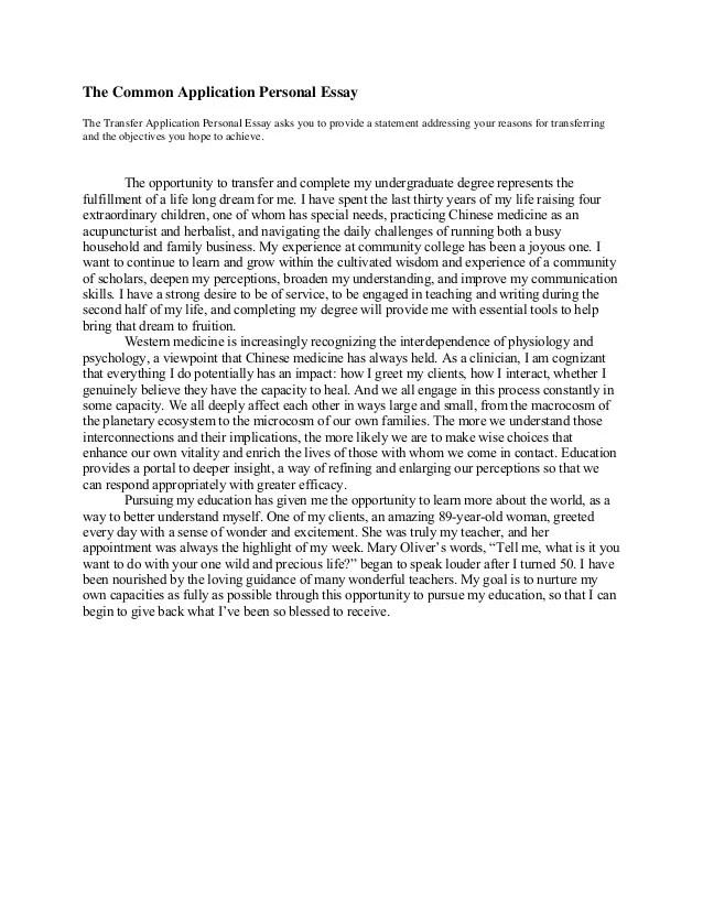 Common app essay questions 2013