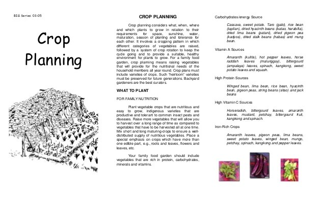 also companion planting and crop planning agricultural training institut  rh slideshare
