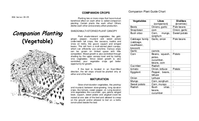 companion crops plant also planting and crop planning agricultural training institut  rh slideshare