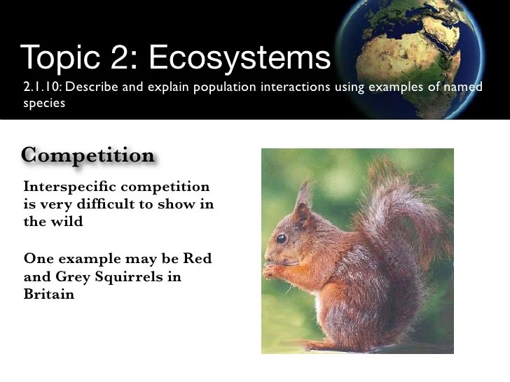 Ecological Competition