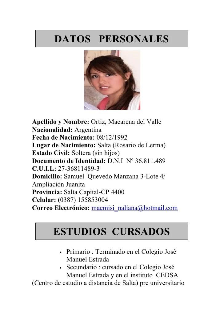 Modelo Curriculum Vitae Profesional Argentina Online Resume