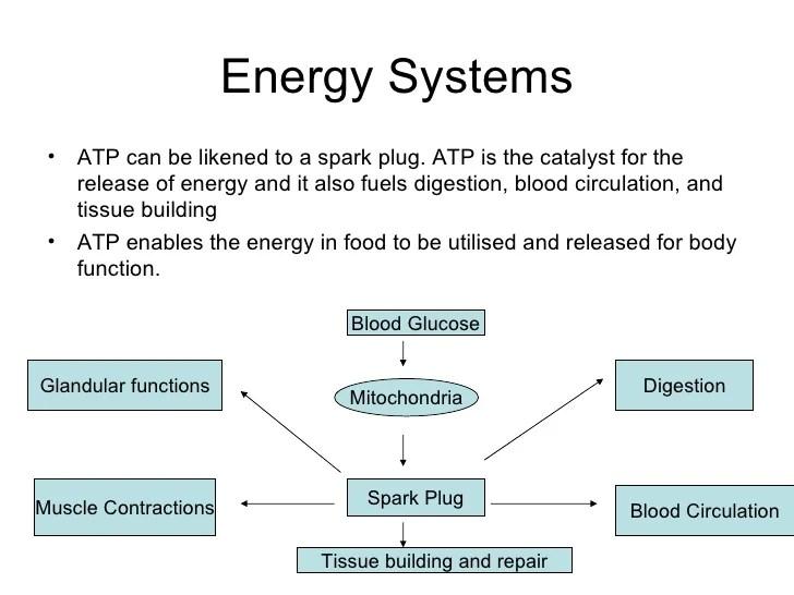 Energy systems slideshare also content marketing software platform hire freelance writer atp rh scienceonreligion