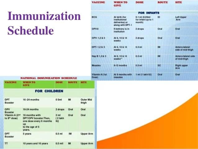 immunization schedule also cold chain ppt rh slideshare