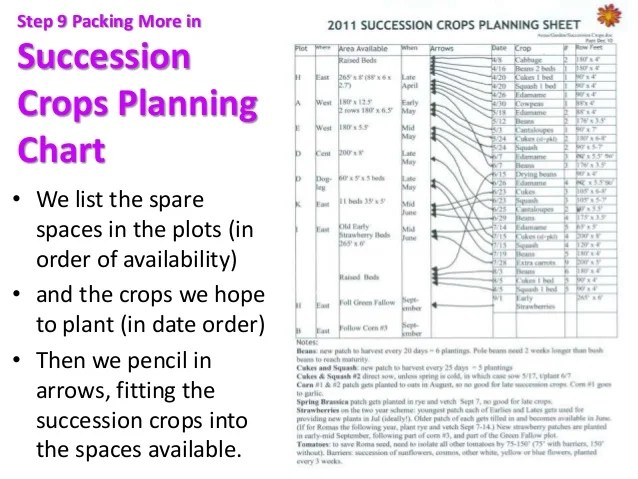 Succession in the winter hoophouse also crop planning for sustainable vegetable production pam dawling rh slideshare