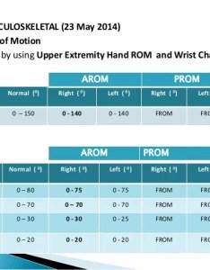 Normal range of motion chart orthopaedics case study closed displaced fracture radius also people davidjoel rh
